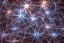Recorde: fibra óptica alcança transmissão de 1 Petabit por segundo